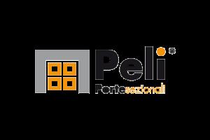 Peli-logo-500x334